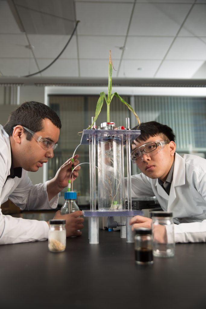 Mechanical engineering researchers studying crops